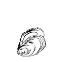 Huîtres creuses n°4 - Arcachon / Cap Ferret