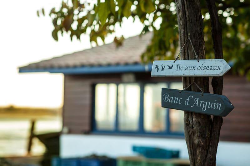 Dégustation d'huîtres - Arcachon, Cap Ferret, ile aux oiseaux, banc d'arguin - La Cabane de l'Aiguillon