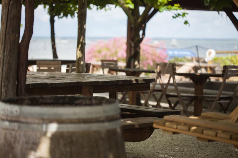 Dégustation d'huîtres - Arcachon, Cap Ferret - La Cabane de l'Aiguillon